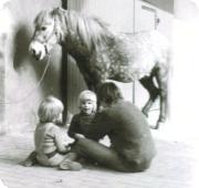ich_pferd