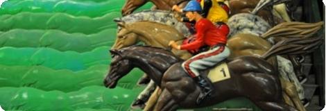 Orthopädie Pferd